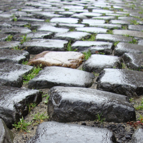 Life can feel like a ride on cobblestones